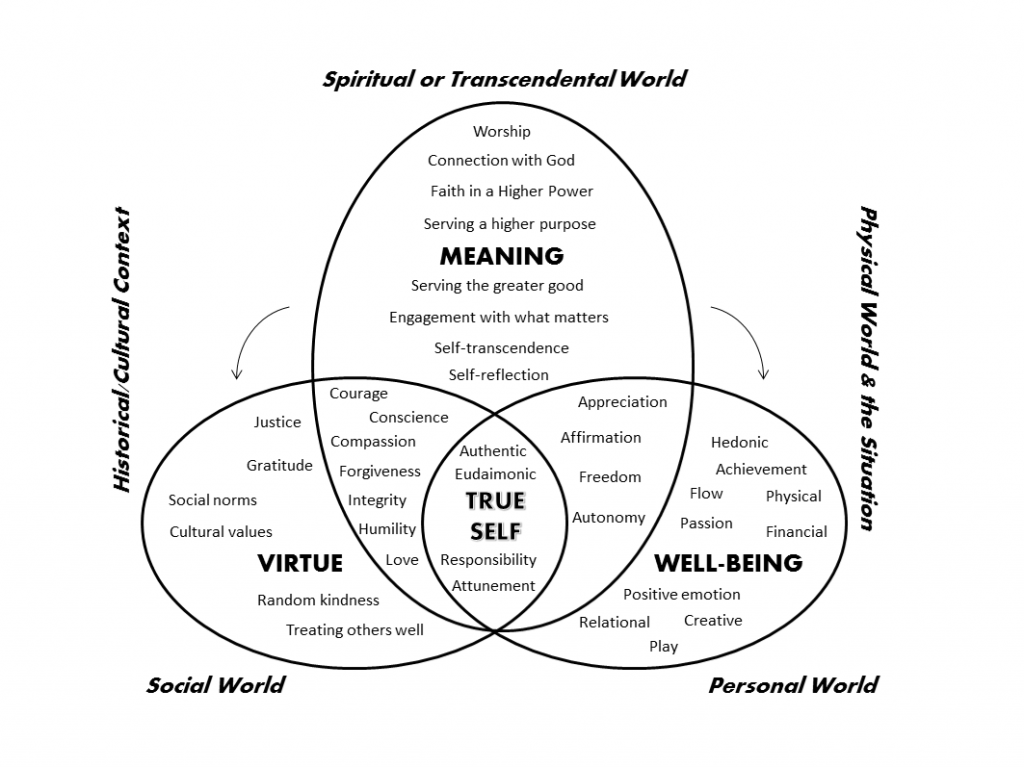 Figure 1. An integrative and meaning-centred approach to a good life.