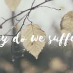 President's Column: Why do we Suffer?